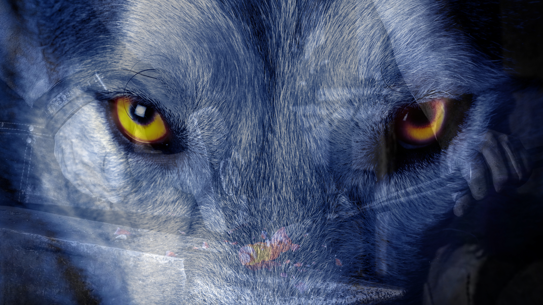 A closeup on a wolf's face focusing on golden eyes with a faint overlay of a blacksmith working at his forge.